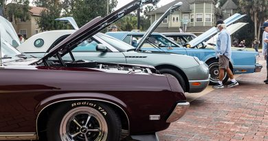 Mustang and Ford Roundup